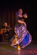 20140209-Die-Magie-Des-Flamenco-008