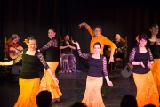 20140209-Die-Magie-Des-Flamenco-020