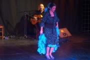 20140209-Die-Magie-Des-Flamenco-021