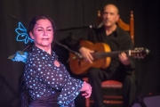 20140209-Die-Magie-Des-Flamenco-026