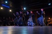 20140209-Die-Magie-Des-Flamenco-056