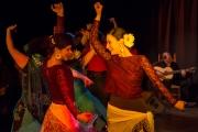 20140209-Die-Magie-Des-Flamenco-062