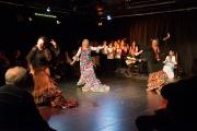 20140209-Die-Magie-Des-Flamenco-064