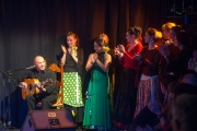 20140209-Die-Magie-Des-Flamenco-074