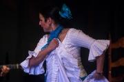 20140209-Die-Magie-Des-Flamenco-076